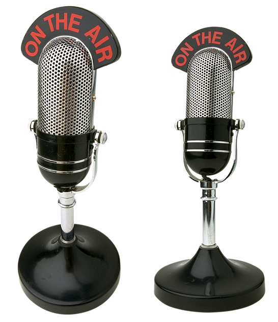 microphones-1491020_640.png